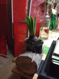 Hou erg van hyacinten. Sowieso van bloemen in het atelier.